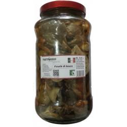 Funghi di bosco in vaso da ml 3100